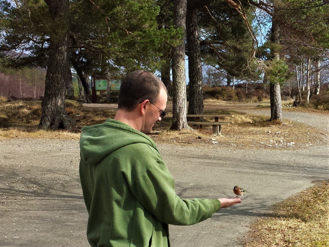 A man in a green sweattop with hood down stand with right arm outstretched and a small wild bird has alighted on his upturned palm. There is a gravel car park, a couple of timber picnic benches and some pine tree trunks behind him