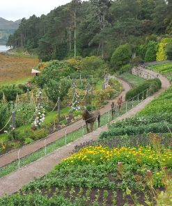 A colourful walled garden on the shore, with a pine clad headland behind and the sea to the left. A wicker sculpture of a horse and two humans makes an interesting garden centrepiece.Inverewe Gardens - Inverewe Gardens and Waterfalls Tour