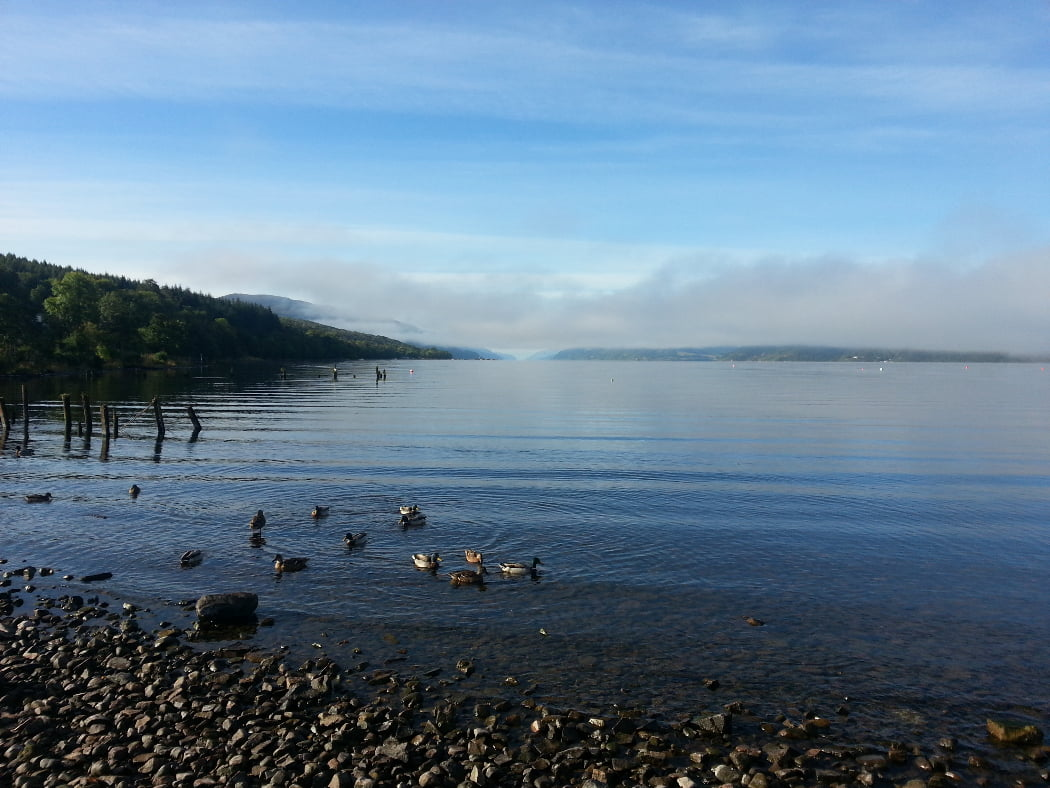 Standing on a shingle shore, looking down a very long blue lake. Ducks close by, on the water. To the left is a wooded shore and a ruined pier. Elsewhere the lake fades into a low mist. Above, the sky is blue.