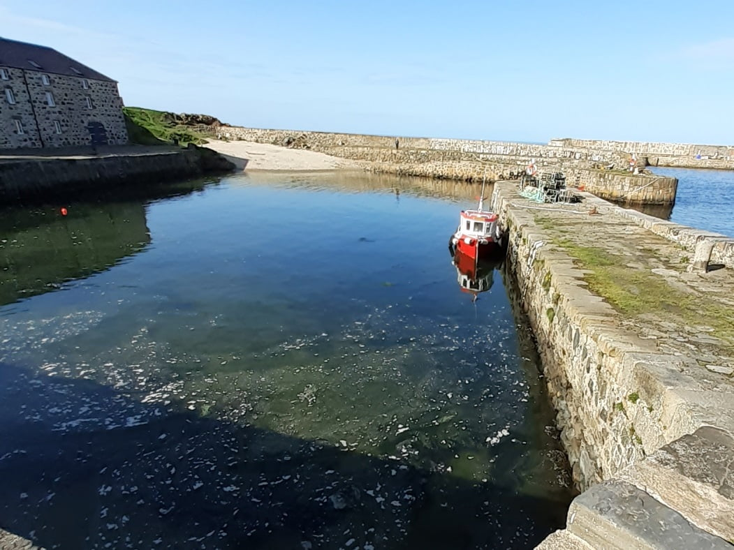 The historic stone-built harbour at Portsoy on our Moray Coast and Speyside Tour. The sky is blue, the water is still and a single red-hulled boat is tied to the breakwater. An old warehouse stands on the harbourside to the left.