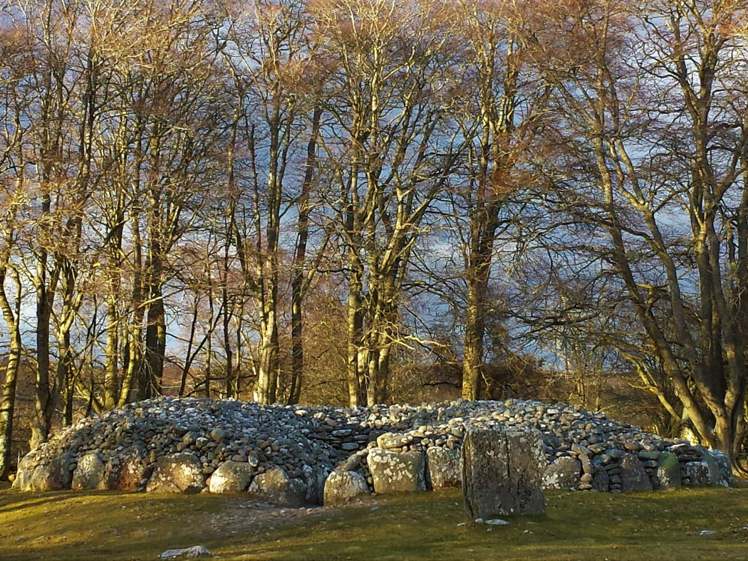 Across the grass from us is a bronze age cairn. It is roofless, and we are looking at the mouth of the entry passage. There is a standing stone to the right of the passage entrance, and to the rear of the cairn are a whole backdrop of very tall leafless mature deciduous trees. The winter sunlight is dappling through the trees.
