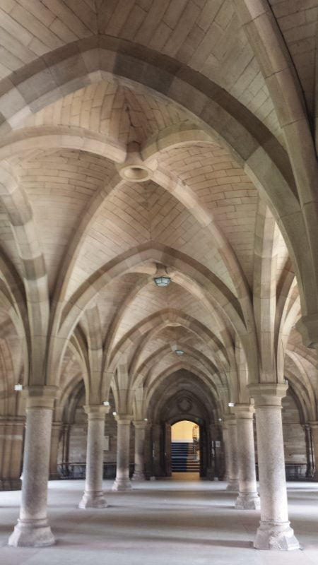 There are 8 stone pillars in front of us, in two rows of 4. There are arched stone ceilings overhead, and the whole effect is like Cathedral cloisters.