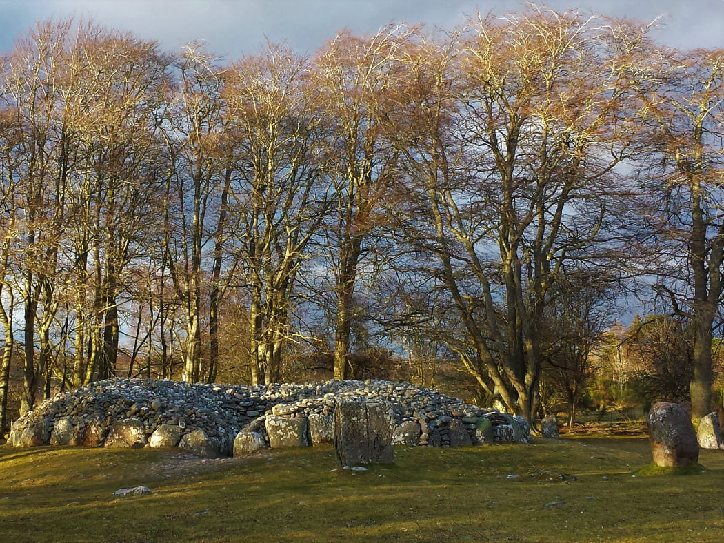 Across the grass from us is a bronze age cairn. It is roofless, and we are looking at the mouth of the entry passage. There are four standing stones towards the right of the picture, and to the rear of the cairn are a whole backdrop of very tall leafless mature deciduous trees. The winter sunlight is dappling through the trees.